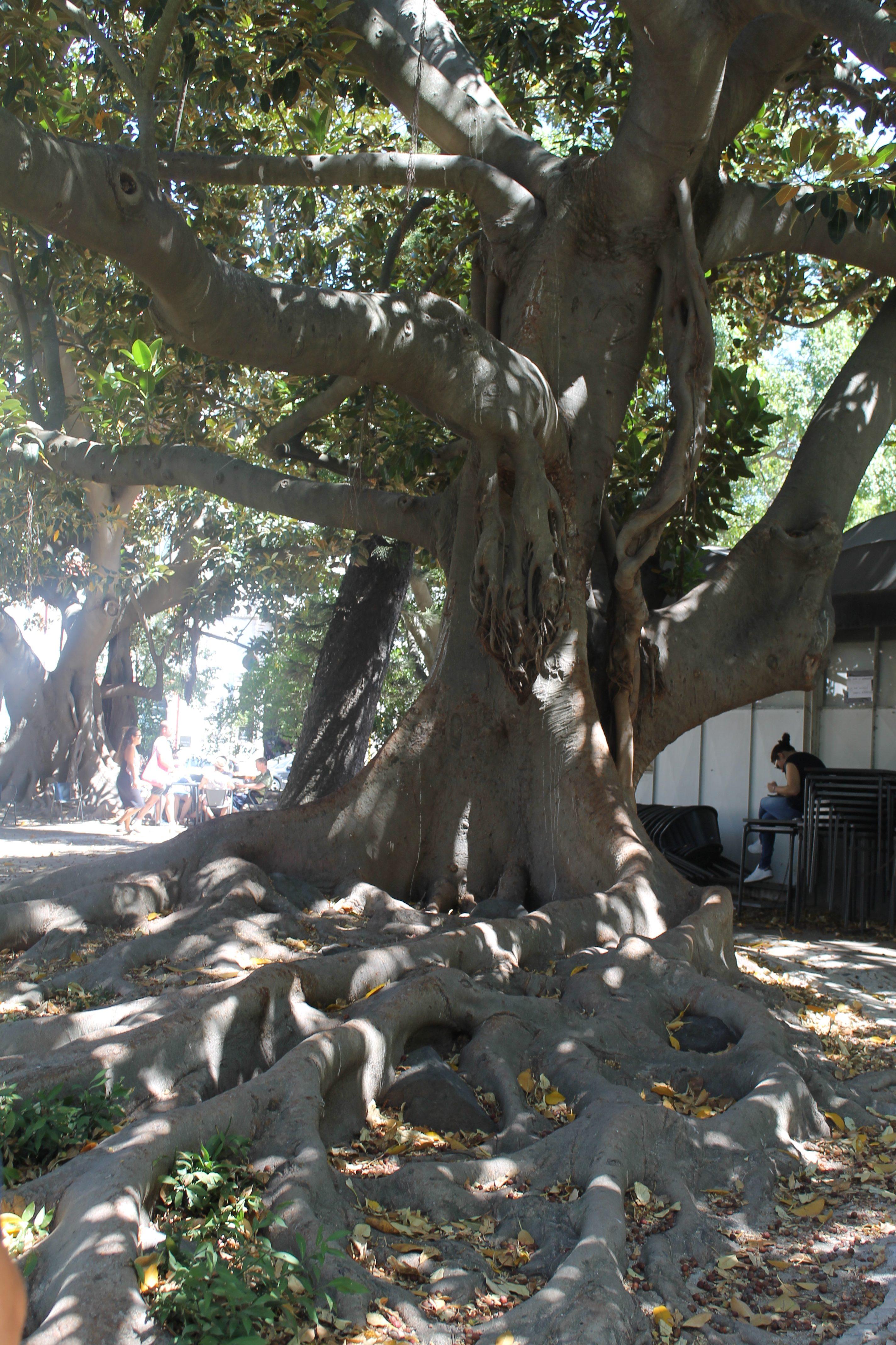 Park i Lissabon