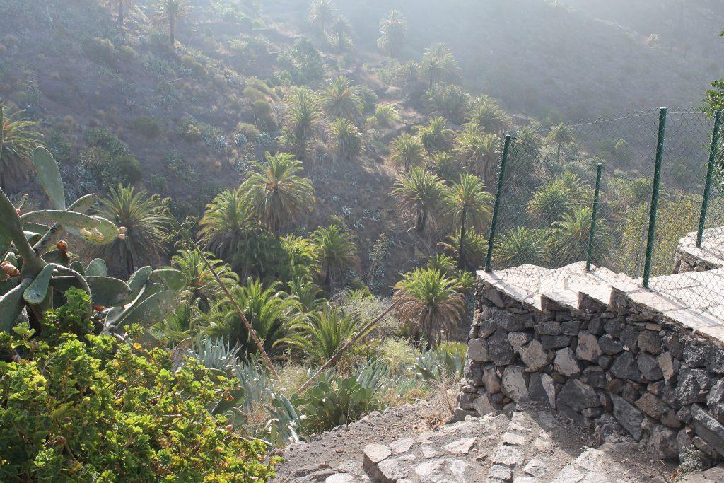 Start på Masca vandringen, Tenerife
