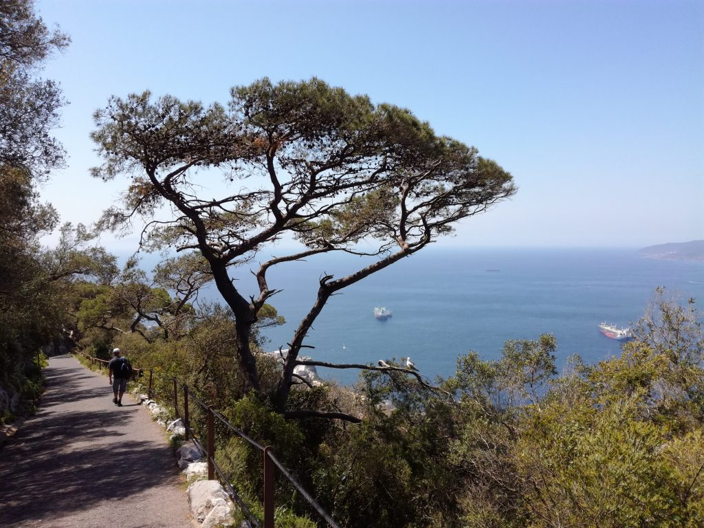 Udsigt fra Gibraltar klippen
