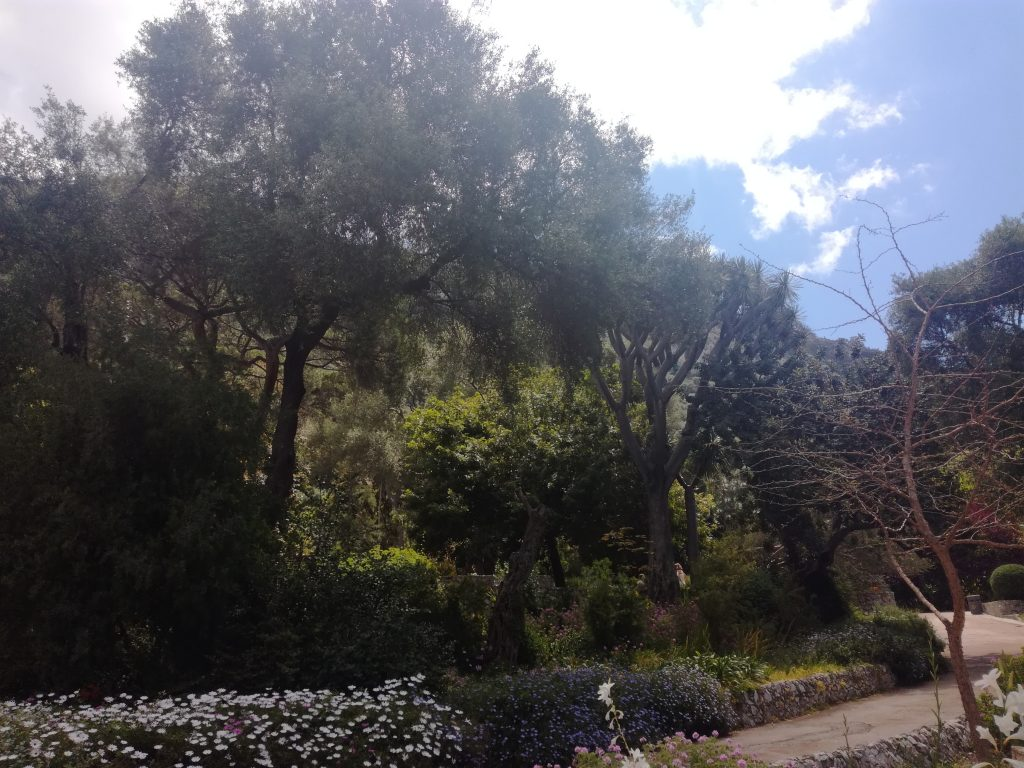 Botanisk Have Gibraltar