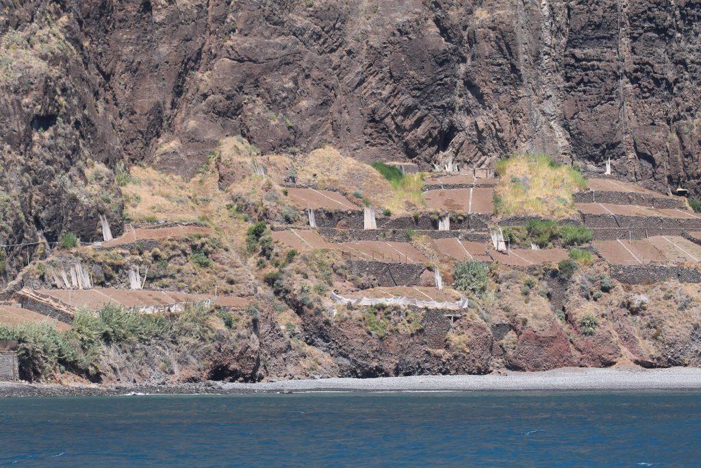 Afgrøder ved vandet, Madeira