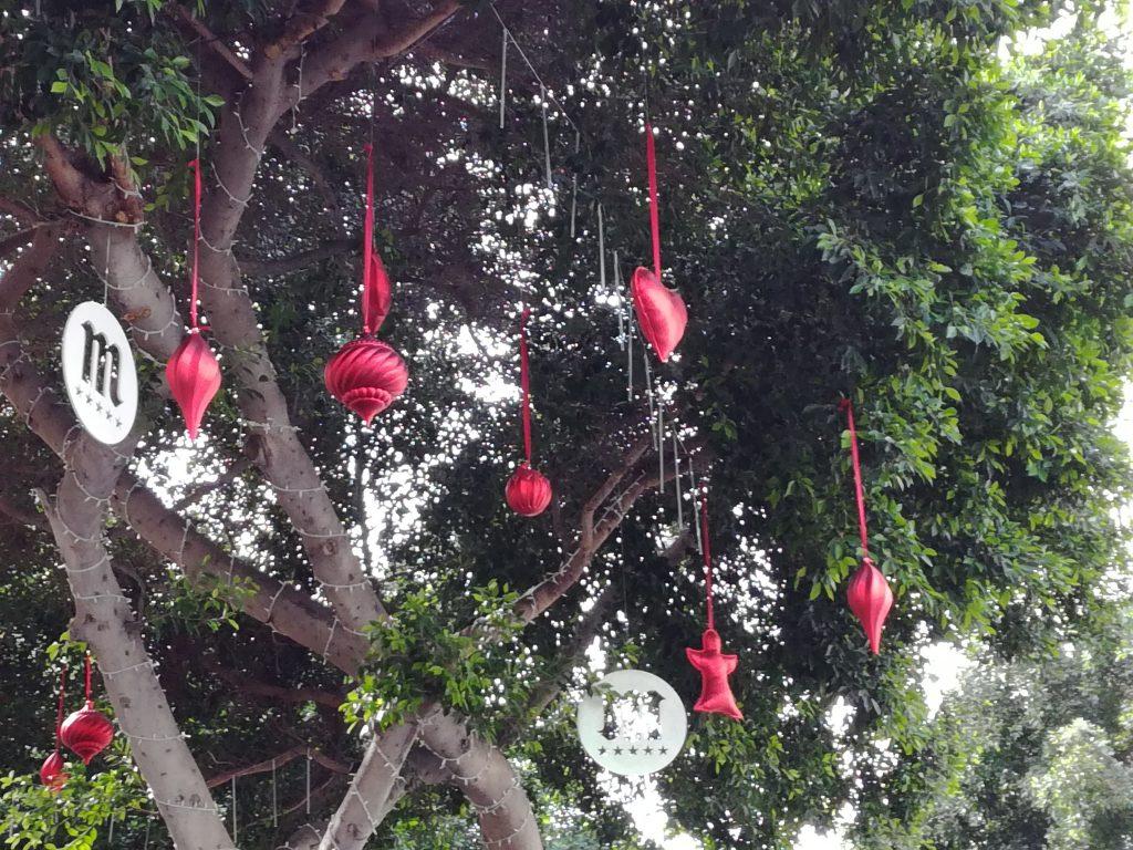 Jul i Las Palmas