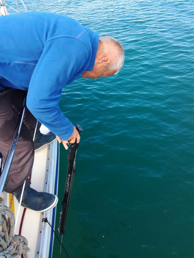 Fiskeri med harpun
