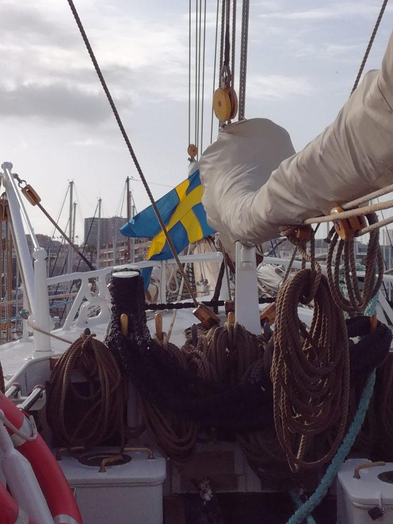 HMS Gladan, svensk skoleskib